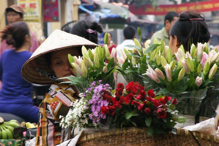 Hanoi Flowers